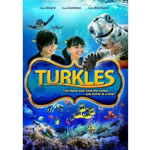 Maverick Entertainment Turkles