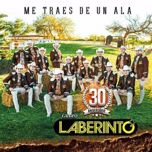 Grupo Laberinto - Me Traes De Un Ala (CD)