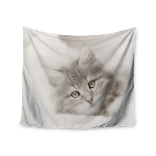 Kess InHouse Monika Strigel 'Main Coon Kitten' 51x60-inch Wall Tapestry
