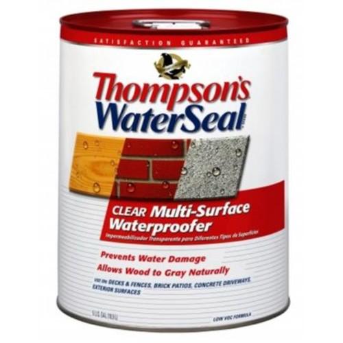 Thompsons 5 Gallon Clear WaterSeal Multi-Surface Waterproofer (JNSN44996)