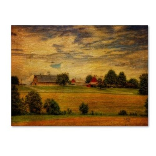 Trademark Fine Art 'Summer Farm' 22