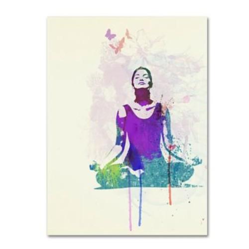 Trademark Fine Art 'Meditating Mind' 24