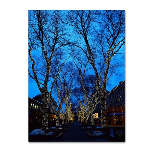 Boston 2 by CATeyes, 14 by 19-Inch Canvas Wall Art [14 by 19-Inch]