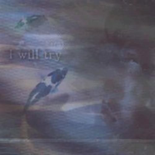 I Will Try [CD]