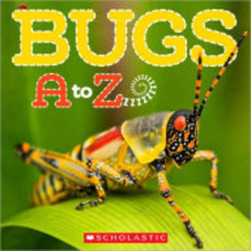 Bugs A to Z (Paperback)