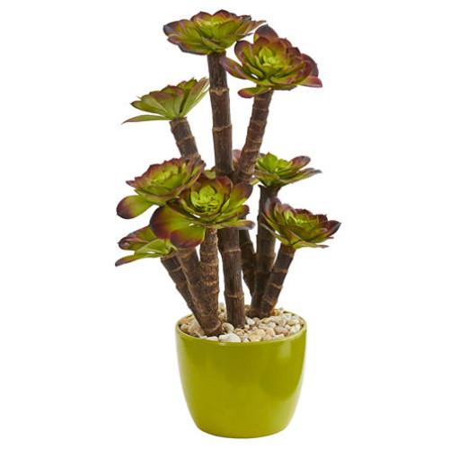 Echeveria Succulent Artificial Plant in Green Ceramic Pot