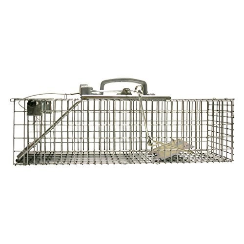 Havahart Easy Set Small 1-Door Animal Trap for Rats and Small Squirrels - 1082-Made in the USA [Qty 1]