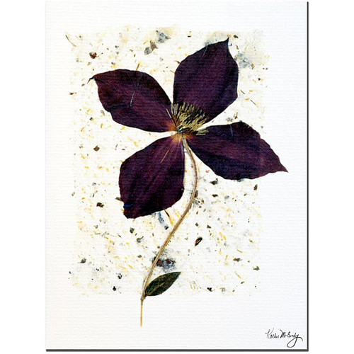 Kathie McCurdy 'Aubergine' Gallery-wrapped Canvas