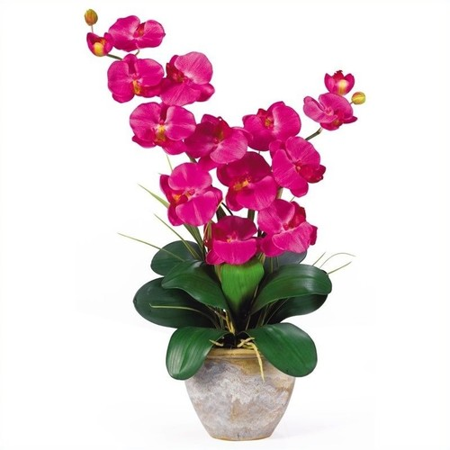 Nearly Natural Double Phalaenopsis Silk Orchid Flower Arrangement