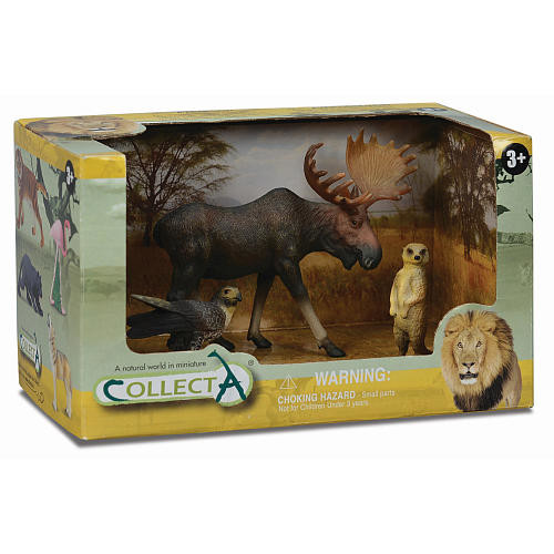 Collecta Wild Life Educational Animal Figurine Toy Open Boxed Set