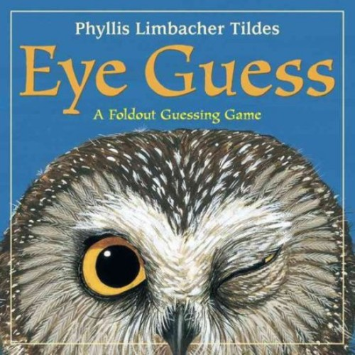Eye Guess : A Foldout Guessing Game