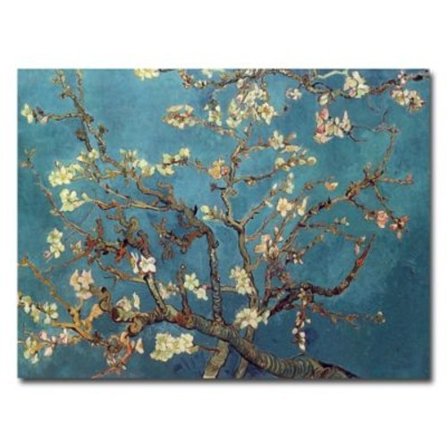 Trademark Fine Art Vincent van Gogh 'Almond Blossoms' Canvas Art 14x19 Inches