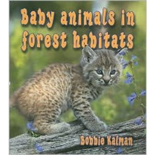 Baby Animals in Forest Habitats