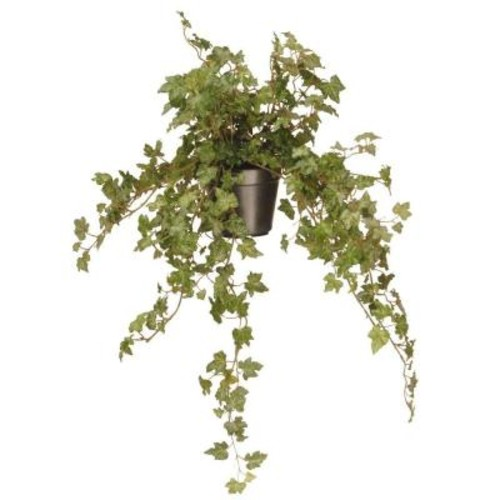 National Tree Company 12 in. Garden Accents Ivy Plant