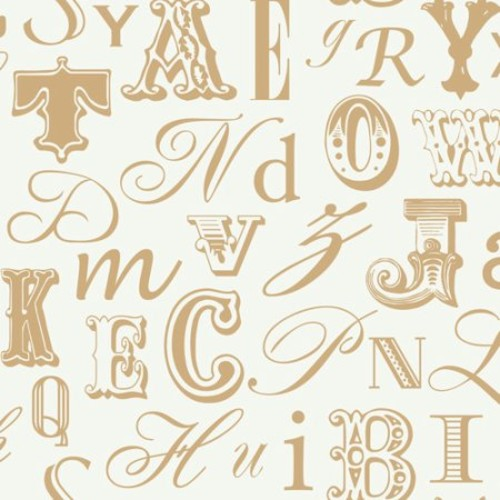 York Wallcoverings Risky Business Word Play 27' x 27'' Text Wallpaper