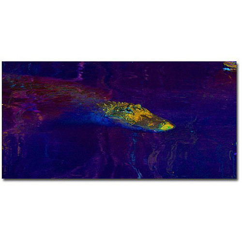 Trademark Fine Art Gallery Wrapped Canvas Patty Tuggle 'Alligator I' Canvas Art