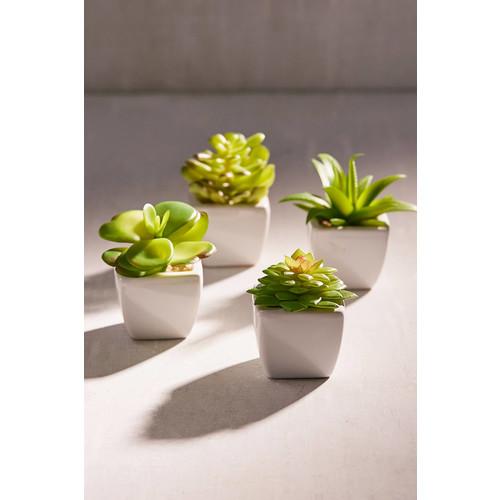 Potted Faux Echeveria Succulent Plant [REGULAR]