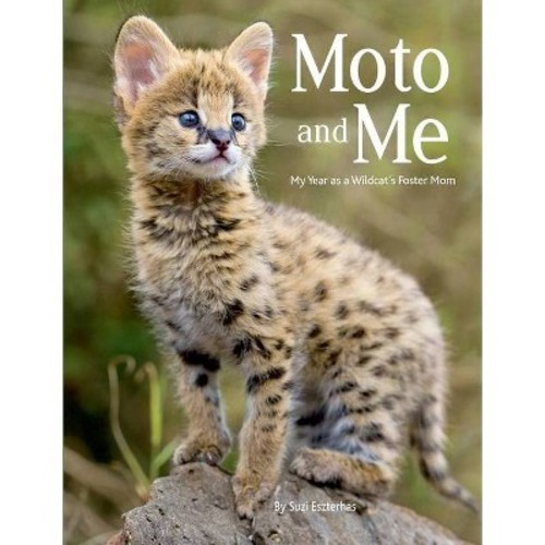 Moto and Me : My Year As a Wildcat's Foster Mom (Hardcover)
