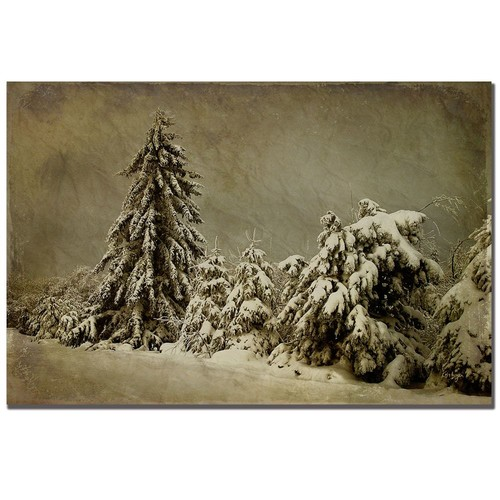 Trademark Global Lois Bryan 'Winter's Wrath' Canvas Art [Overall Dimensions : 16x24]