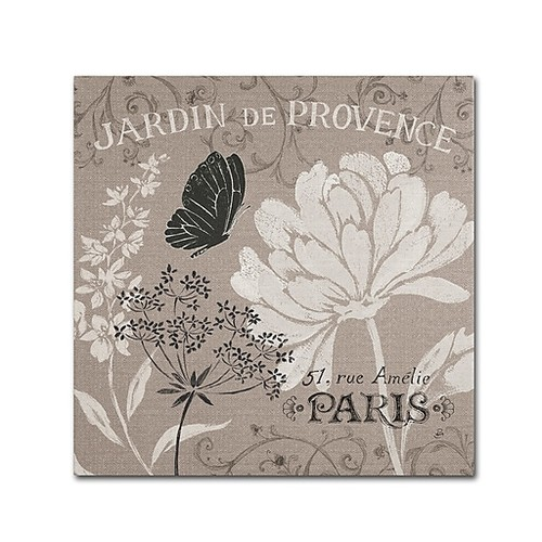 Trademark Fine Art WAP0102-C1818GG