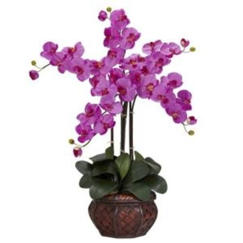 31 in. H Orchid Phalaenopsis with Decorative Vase Silk Flower Arrangement