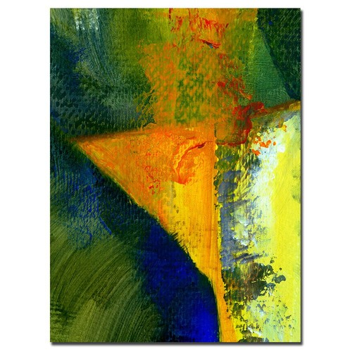 Trademark Global Michelle Calkins 'Orange and Blue Color Study' Canvas Art [Overall Dimensions : 18x24]