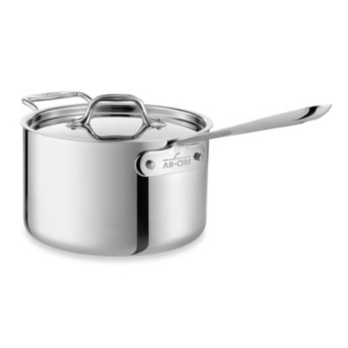 All-Clad Stainless 3-Quart Saucepan with Loop Handle