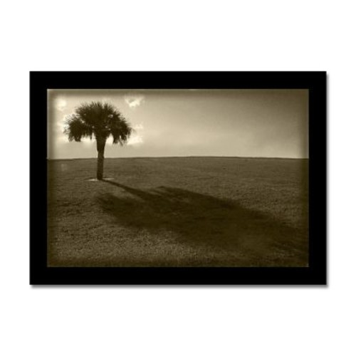 Ready2hangart 'Lone Palm Tree' by Bruce Bain Photographic Print on Wrapped Canvas