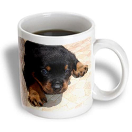 3dRose - Taiche Photography - Dog Rottweiler Puppy - 11 oz mug