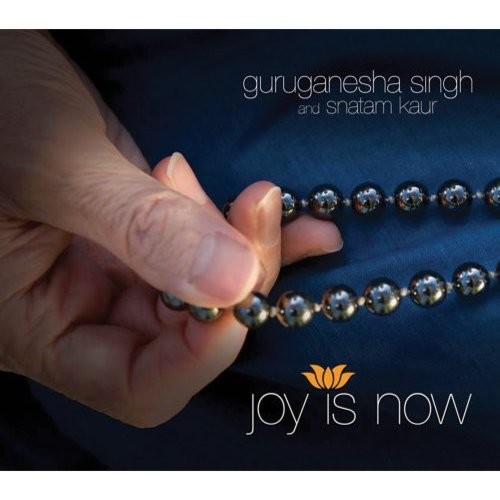 Joy is Now [CD]