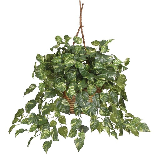 nearly natural Hanging Silk Pothos Plant