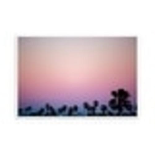 Pink Sky - Los Angeles, California - Capturing America - 36x24 Matte Poster Print Wall Art
