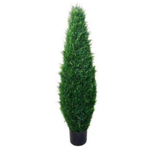 Romano 3.5 ft. Cypress Tree