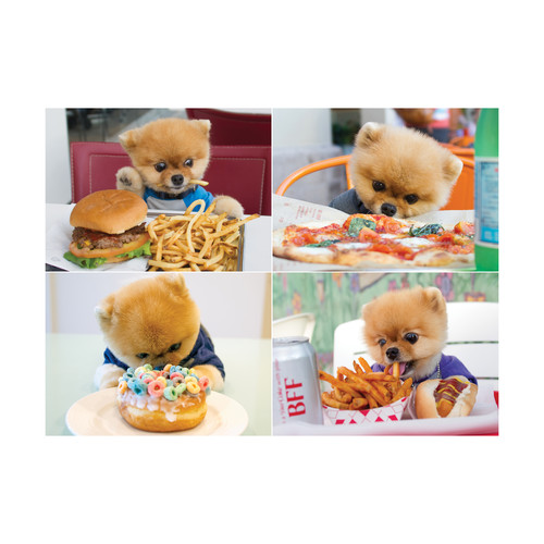 Willow Creek Press Jiffpom Jigsaw Puzzle: 1000 Pcs