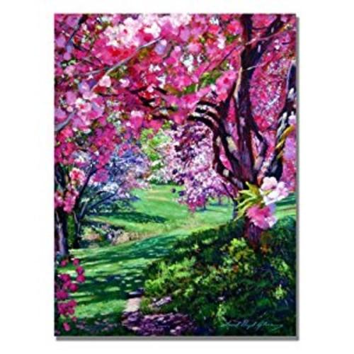 Sakura Romance by David Lloyd Glover, 18x24-Inch Canvas Wall Art: Prints: Posters & Prints [18 by 24-Inch]