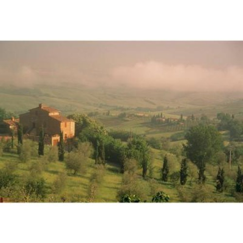 National Geographic 72 in. H x 48 in. W Tuscany Wall Mural