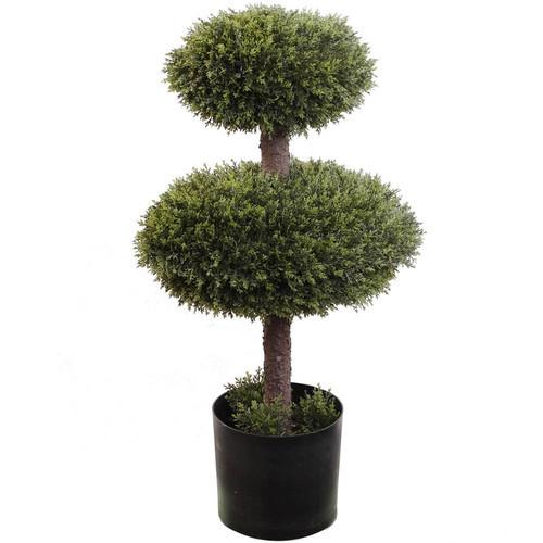 Double Cedar Topiary in Pot