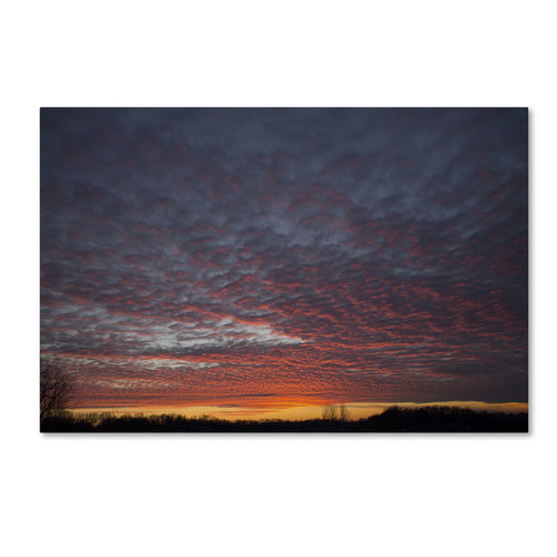 Kurt Shaffer 'Amazing Winter Sunset' Canvas Art [option : 30x47 Wrapped Canvas Art]