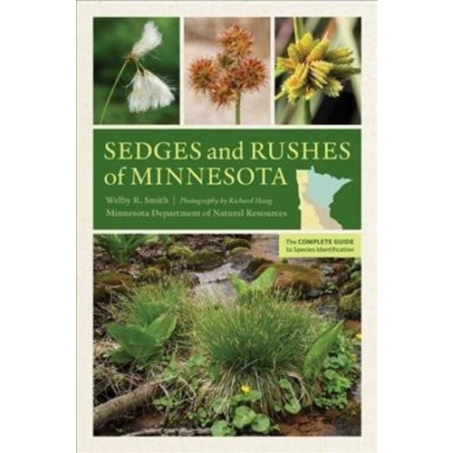 Sedges and Rushes of Minnesota : The Complete Guide to Species Identification (Paperback) (Welby R.