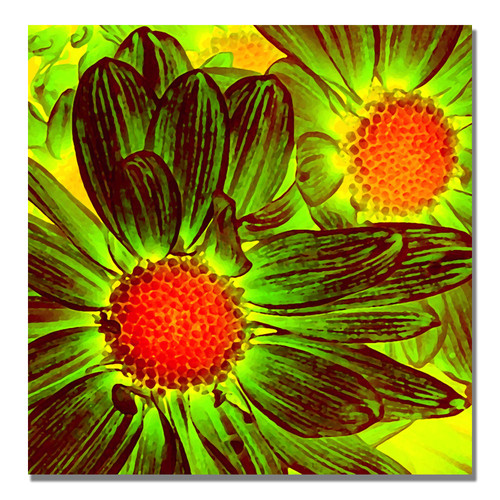 Trademark Global Amy Vangsgard 'Pop Daisies V' Canvas Art [Overall Dimensions : 18x18]