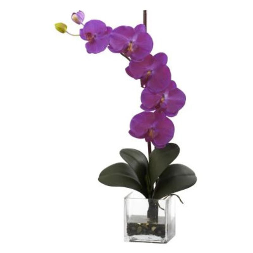 Nearly Natural Giant Phalaenopsis Orchid in Glass Planter