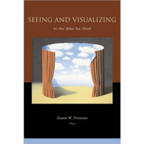 Seeing and Visualizing: It's Not What You Think
