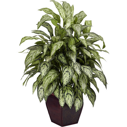 38 in. H Green Silver Queen with Decorative Planter Silk Plant