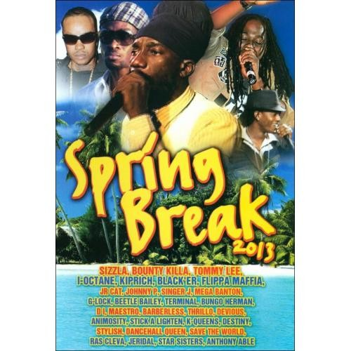 Spring Break 2013 [DVD] [2013]