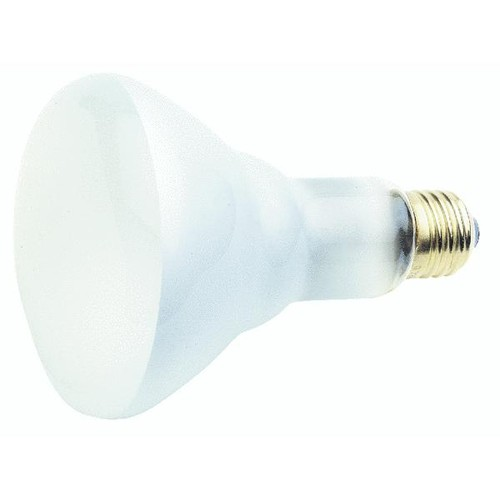 Satco BR30 Incandescent Floodlight Light Bulb - S3259
