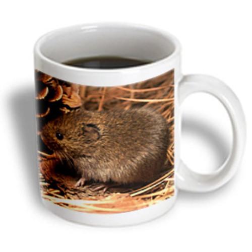 3dRose - Rodent - Mouse - 11 oz mug