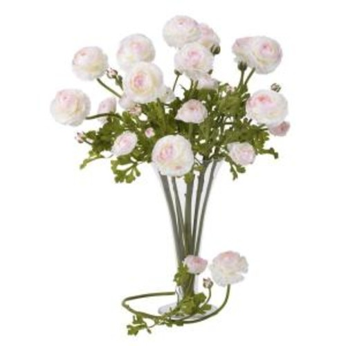 23 in. H White and Pink Ranunculus Stem (Set of 12)