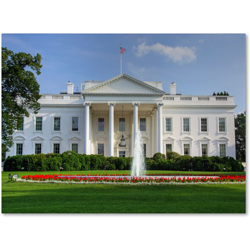 White House by CATeyes, 14 by 19-Inch Canvas Wall Art [14 by 19-Inch]
