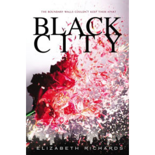 Black City (Black City Chronicles Series #1)