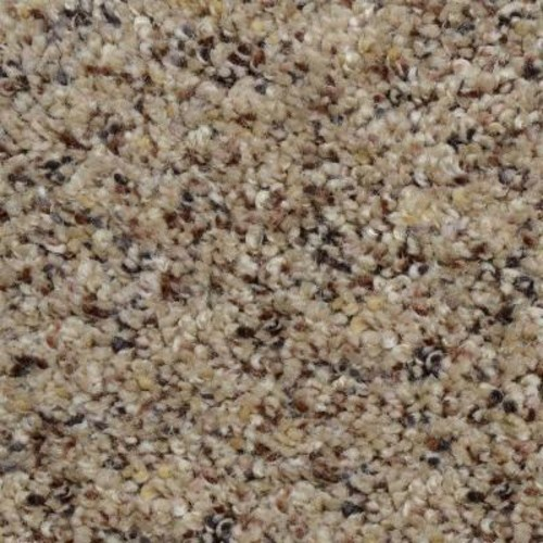 Home Decorators Collection Beach Club I - Color Humboldt Texture 12 ft. Carpet